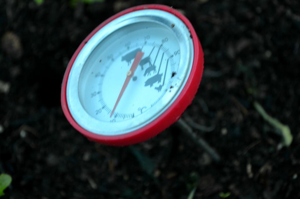 Termometer i varmbänk.