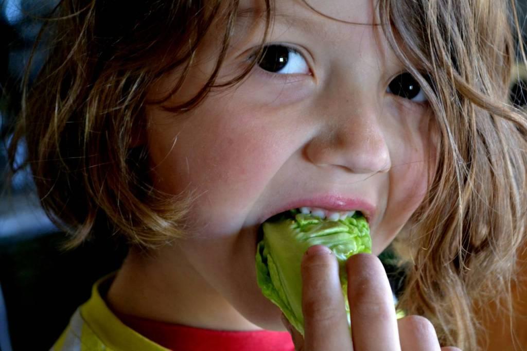 Barn äter sallat