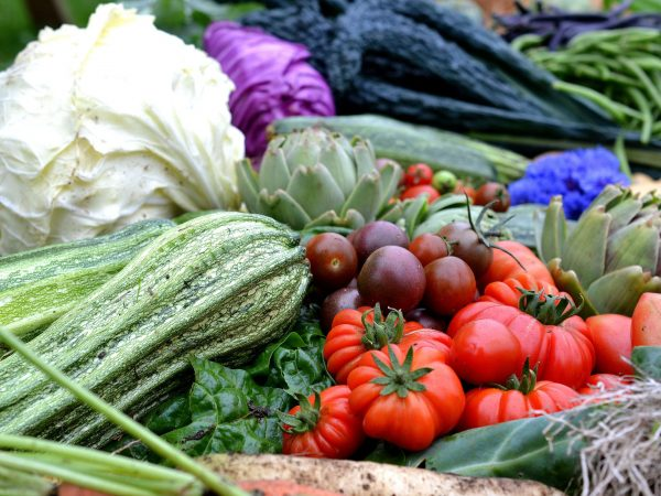 Nyskördade grönsaker ligger tätt bredvid varandra.