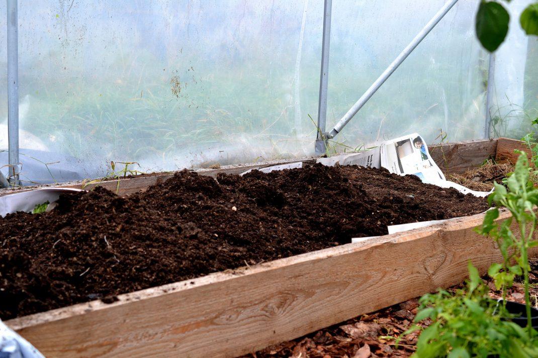 En odlingsram fylld med jord i tunnelväxthuset.