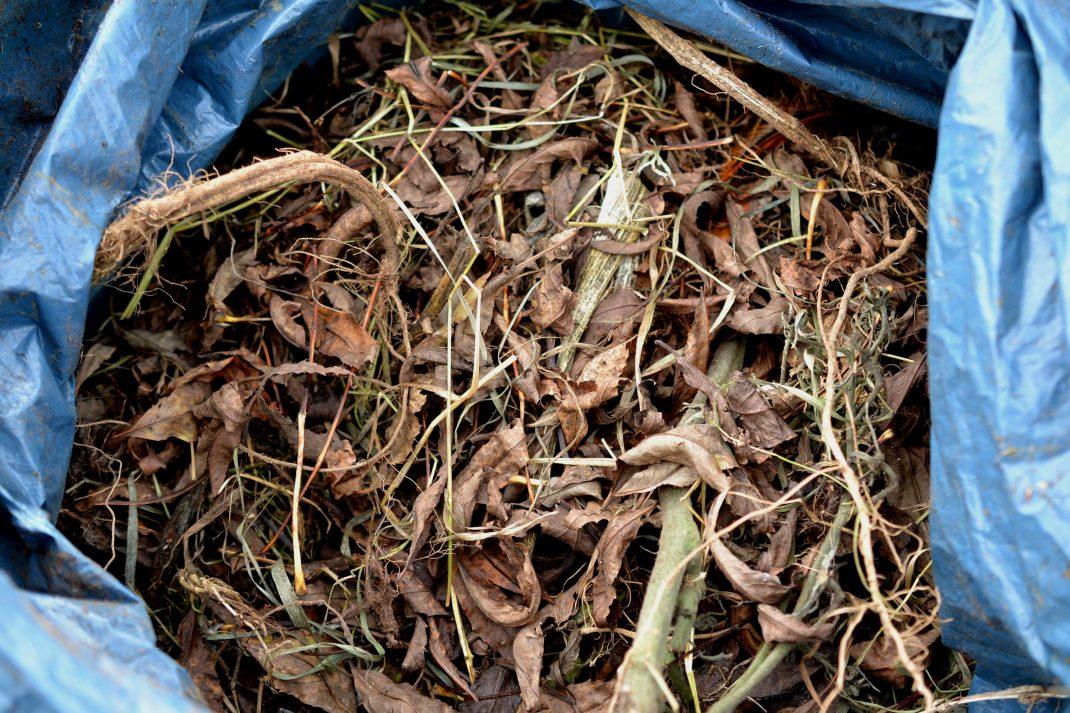 Löv och trädgårdsskräp i en säck.