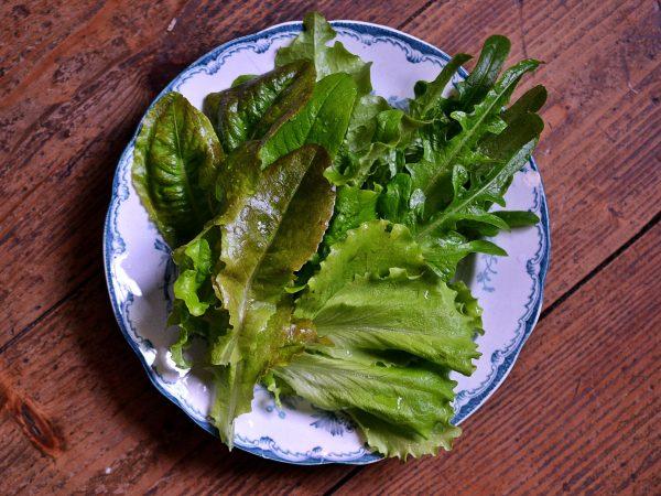 Gröna fina sallatsblad på en tallrik.