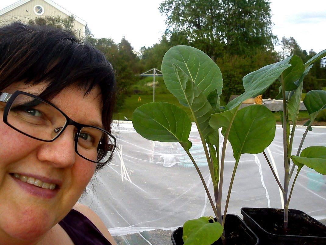 Agneta håller upp en kålplanta i kruka och visar upp.