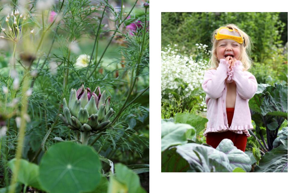 Bilder ur boken Skillnadens Trädgård.