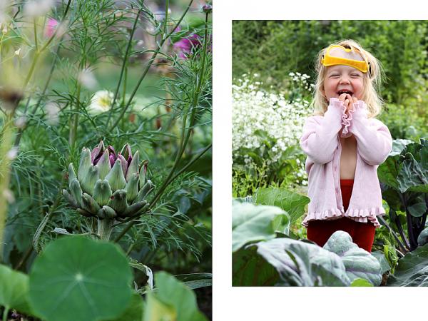 Bild på kronärtskocka och barn i trädgården.