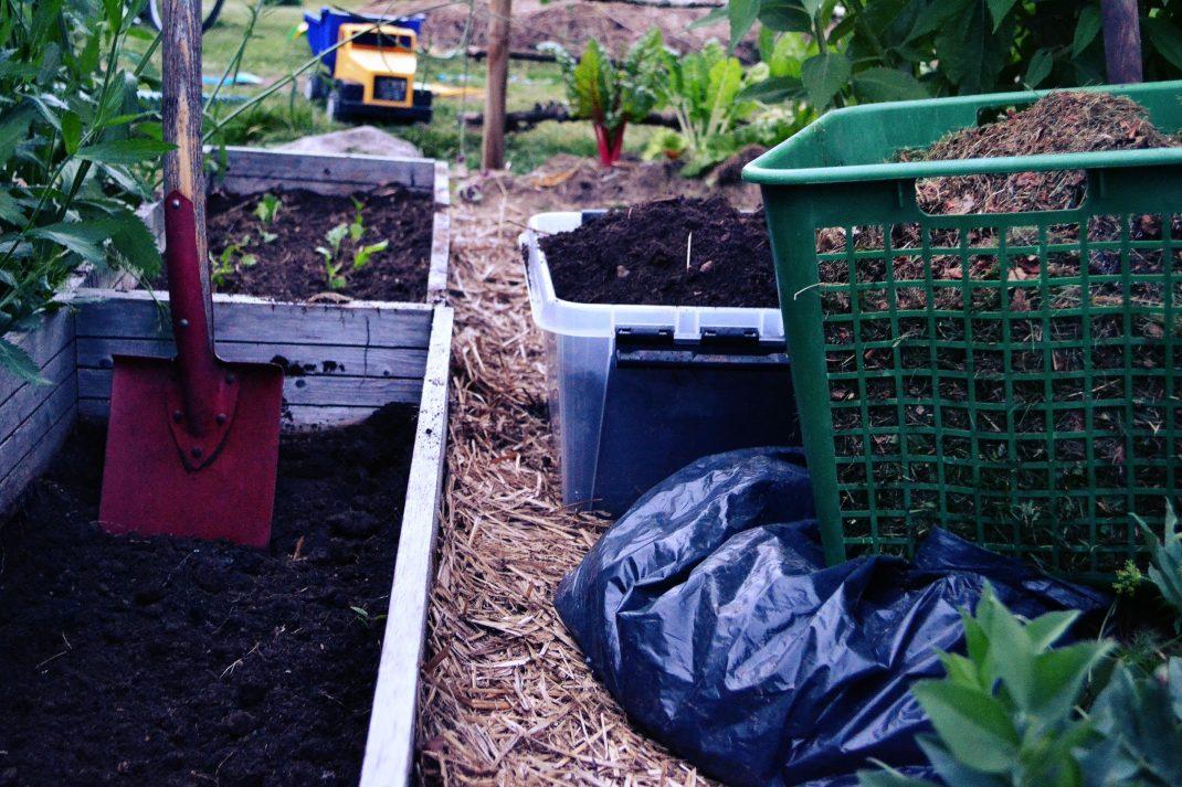 En liten odlingslåda har grävts ur och ska fyllas med gräsklipp och löv.