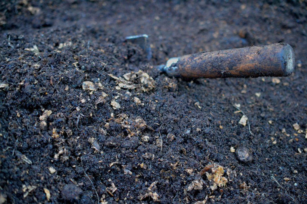 Ren jord med rester av kutterspån.