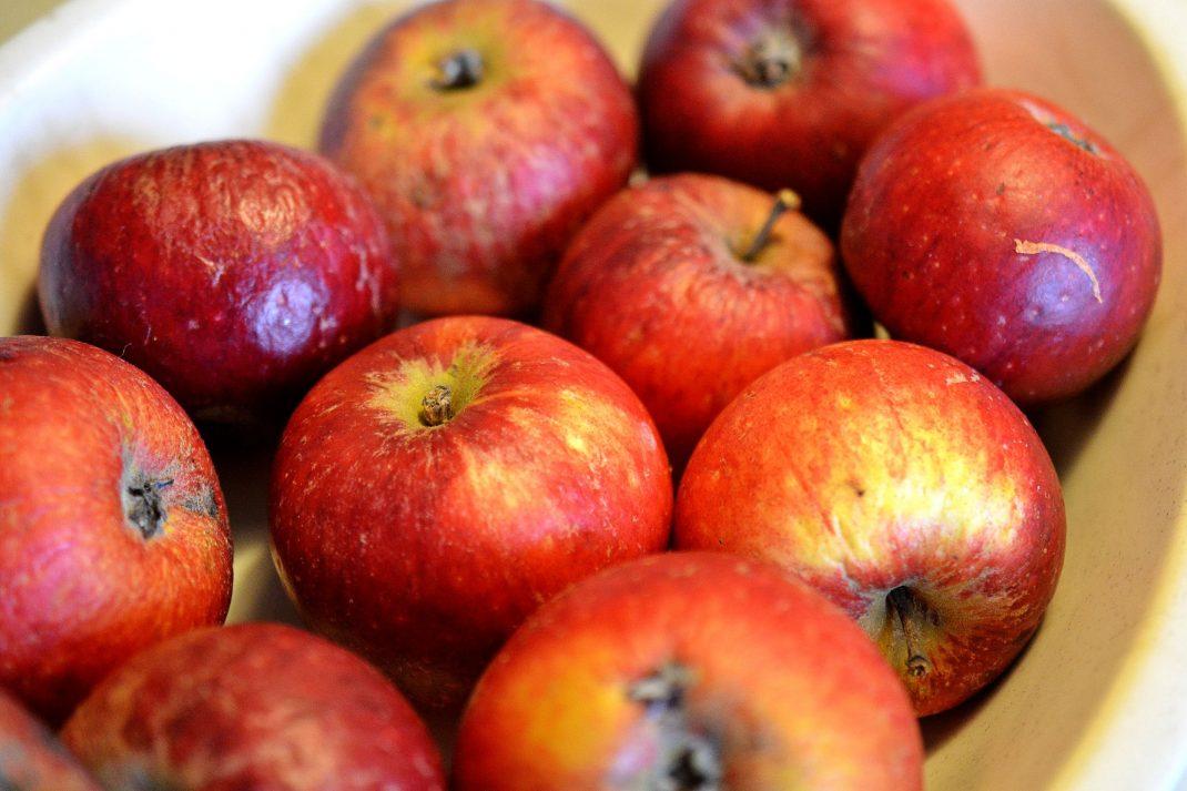 Röda äpplen ligger i en skål.