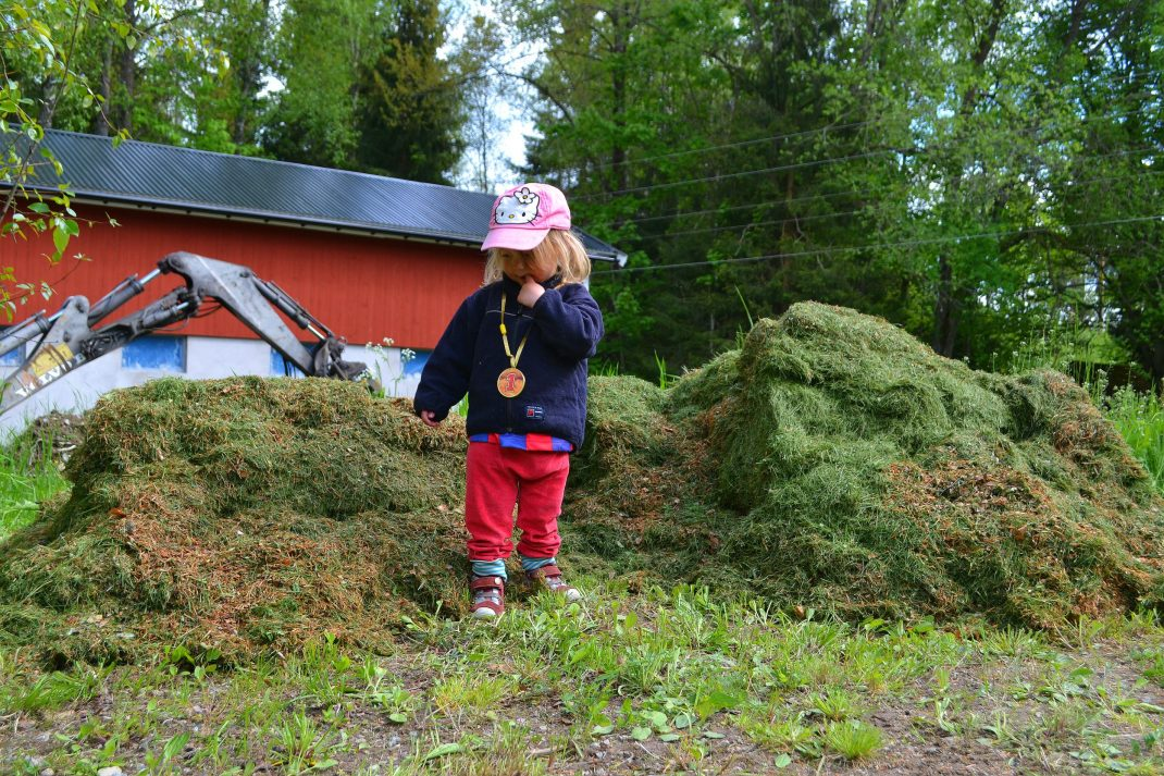 En jättestor gräshög med en liten tjej i rosa keps framför. Vegetable garden, a large pile of grass clippings.