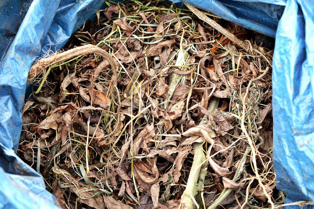 Löv och växtdelar i en säck.