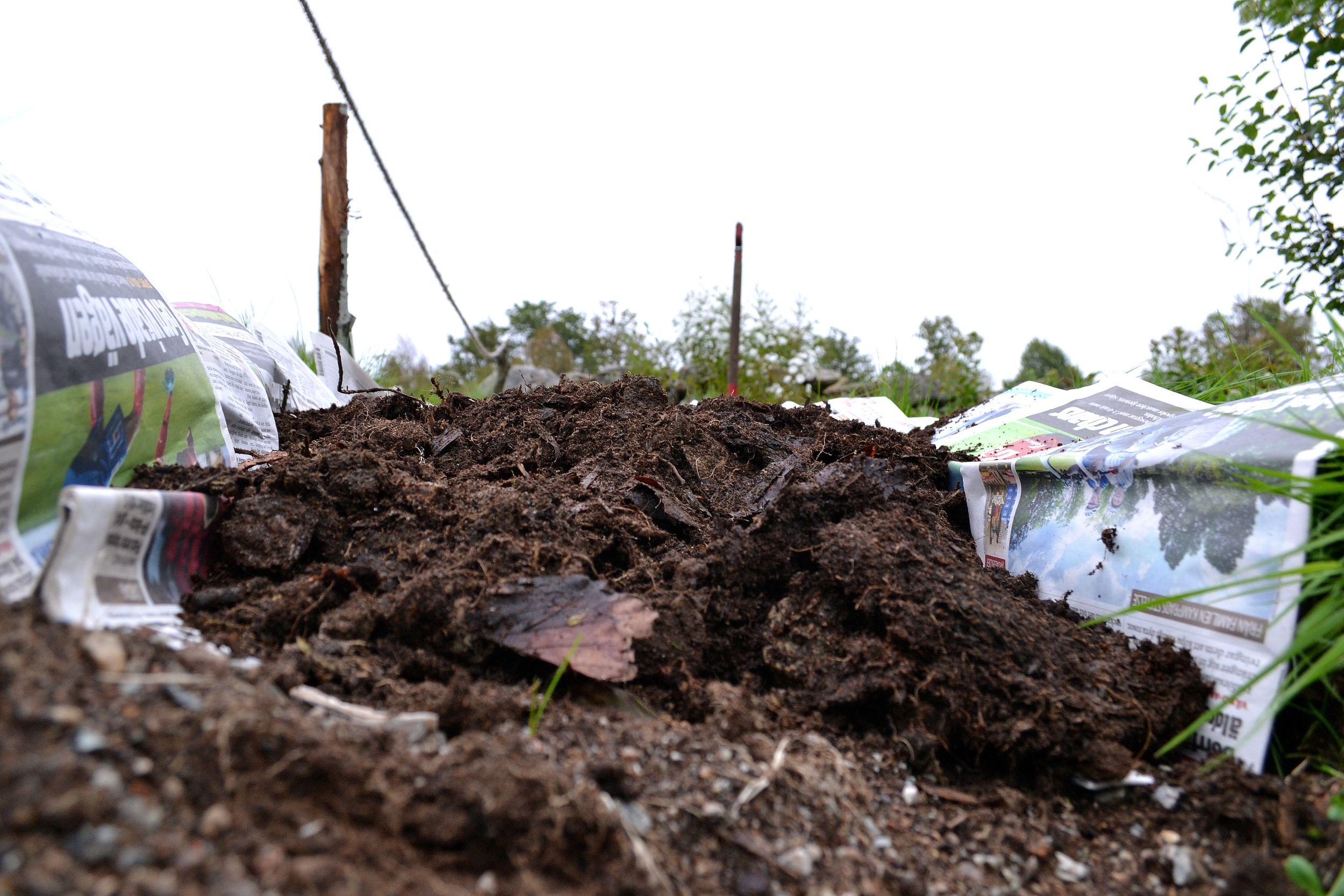 En ny odlingsbädd läggs på gräsmattan över ett lager tidningar
