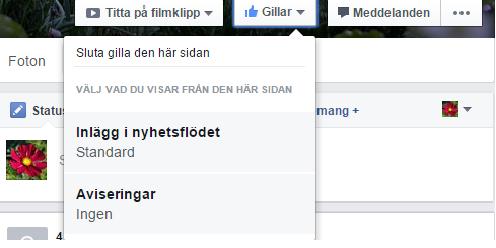 Skärmdump från Facebook