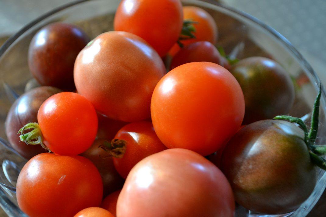 En skål med små tomater i olika röda nyanser.