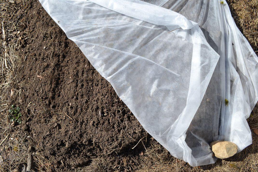 En flik av fiberduken har vikts undan och blottar bar jord.