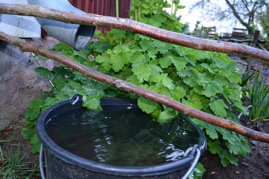 En murarhink med vatten under ett stuprör.
