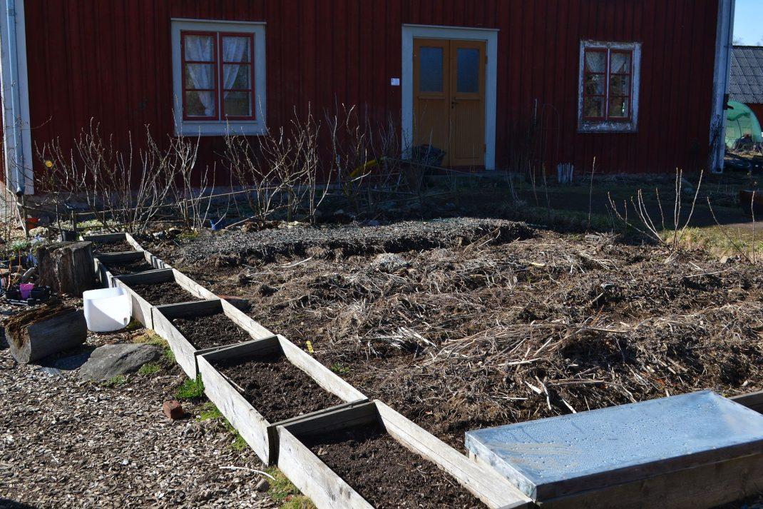 Täckta odlingsbäddar i blivande kålkvarteret.