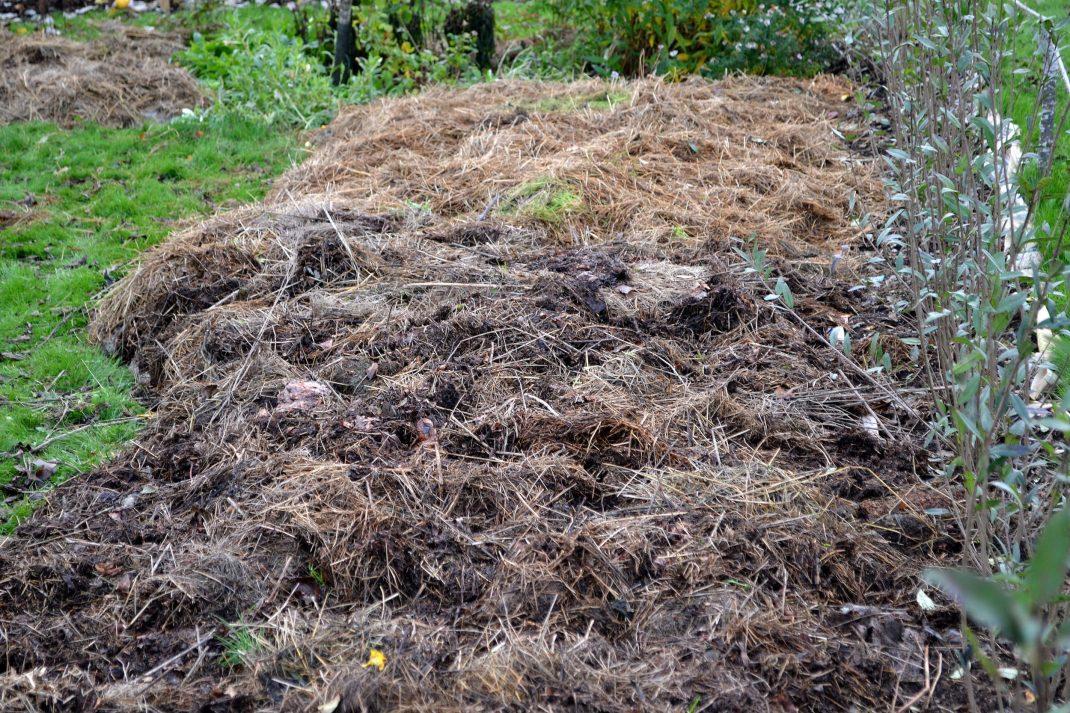 Ett stort område är täckt med ensilage. No-dig flower beds, an area covered with silage.
