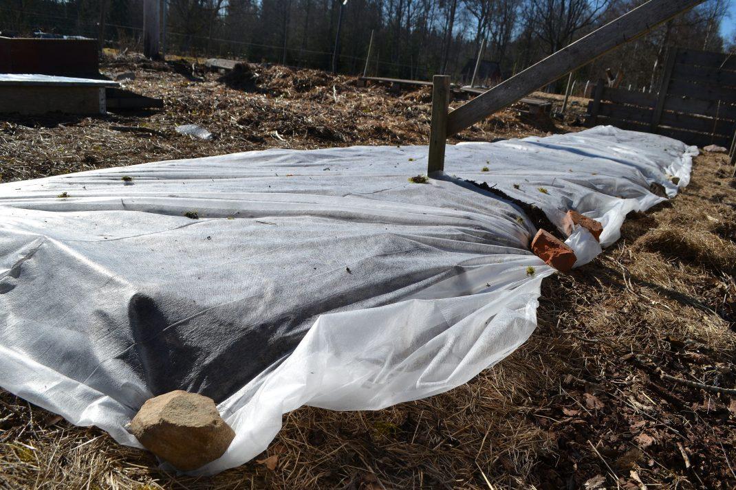 Djupbädden är täckt av en tunn fiberduk.
