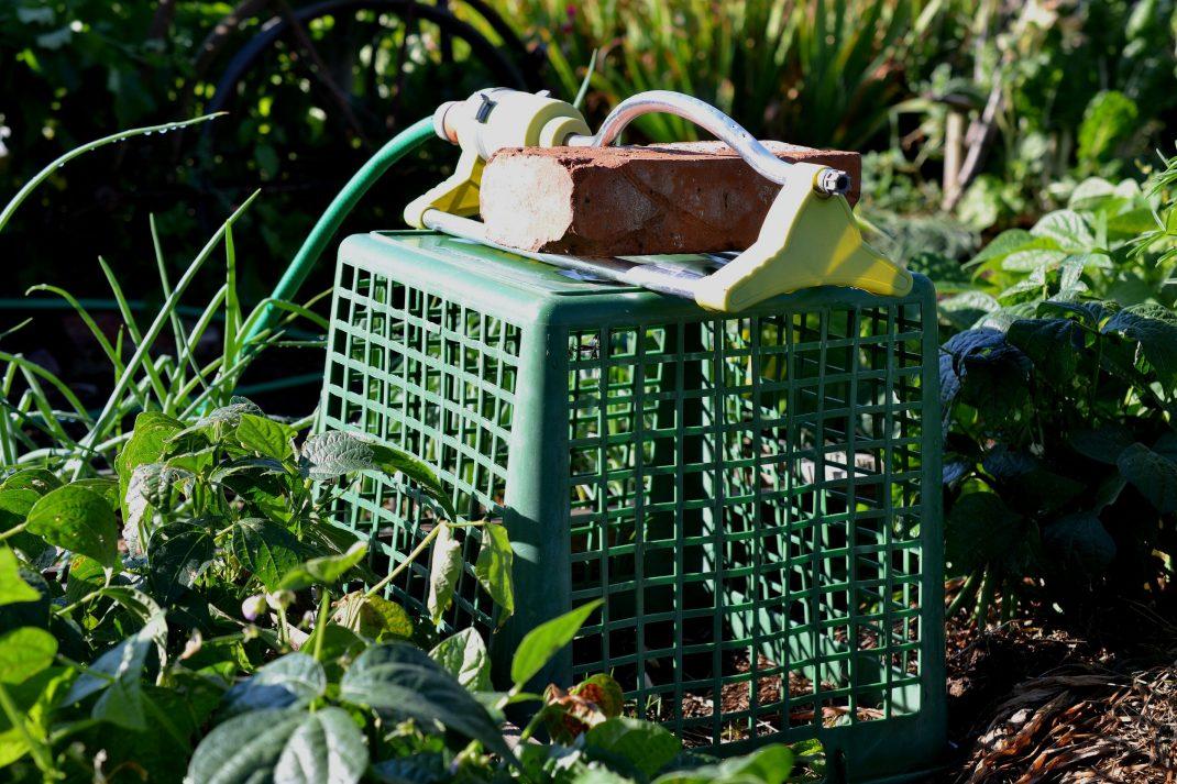 En vattenspridare på en uppochnervänd trädgårdskorg.