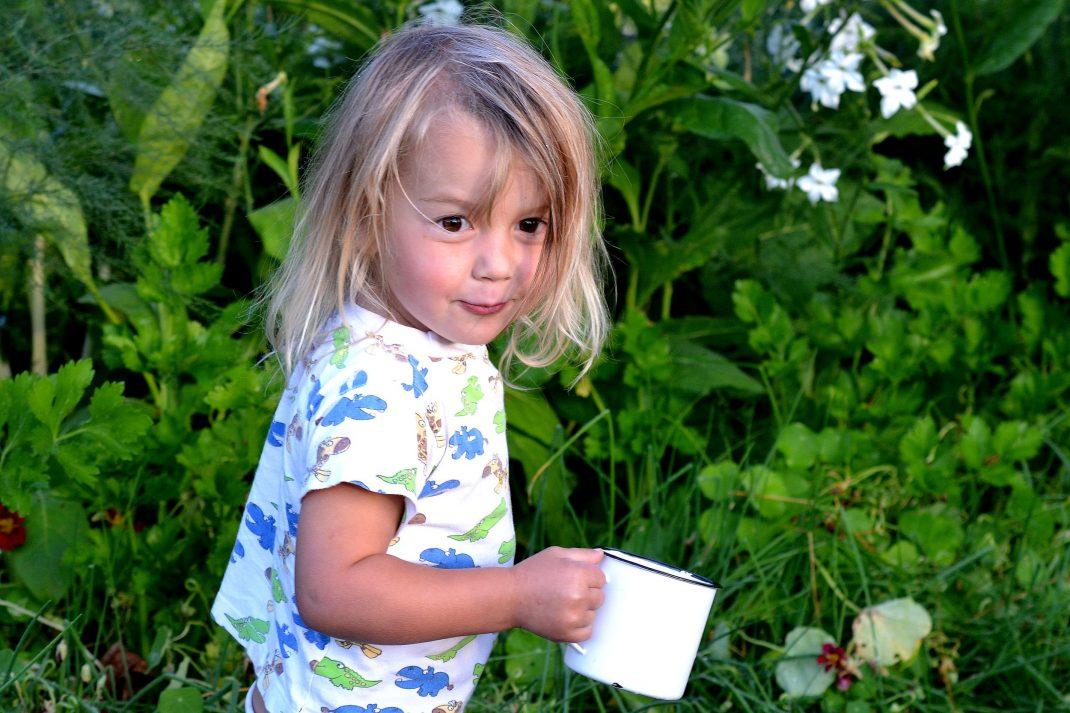 Ett litet barn springer genom köksträdgården med en emaljmugg full av bär.