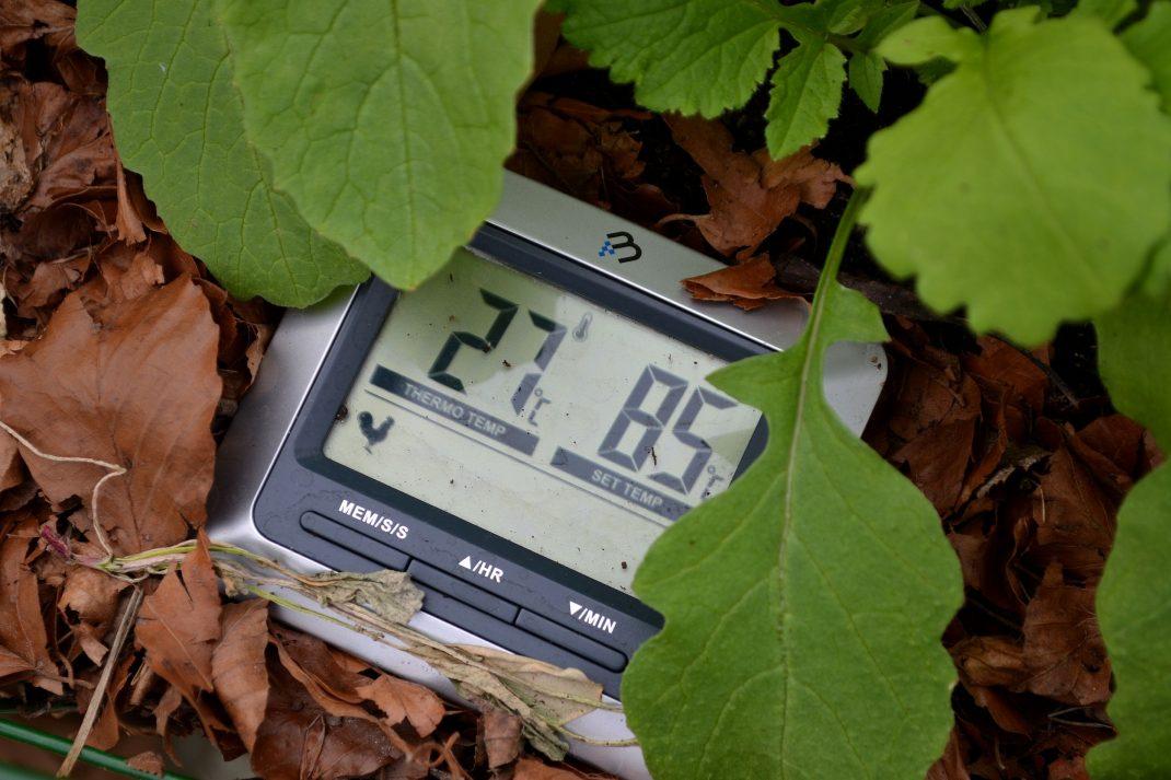 Termometer i varmbänken visar 27 grader.