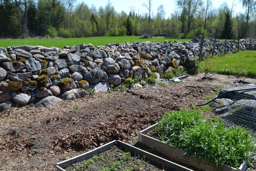En lång odlingsbädd nedanför en vacker stenmur.