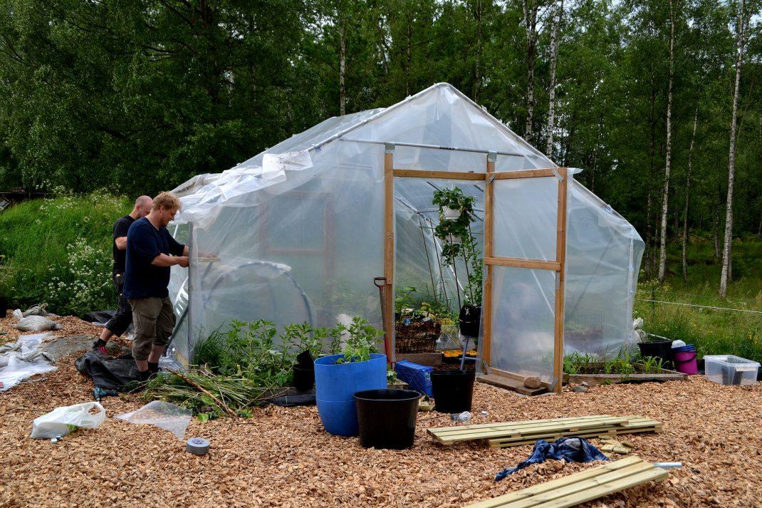 Ett tunnelväxthus i plast i trädgården.