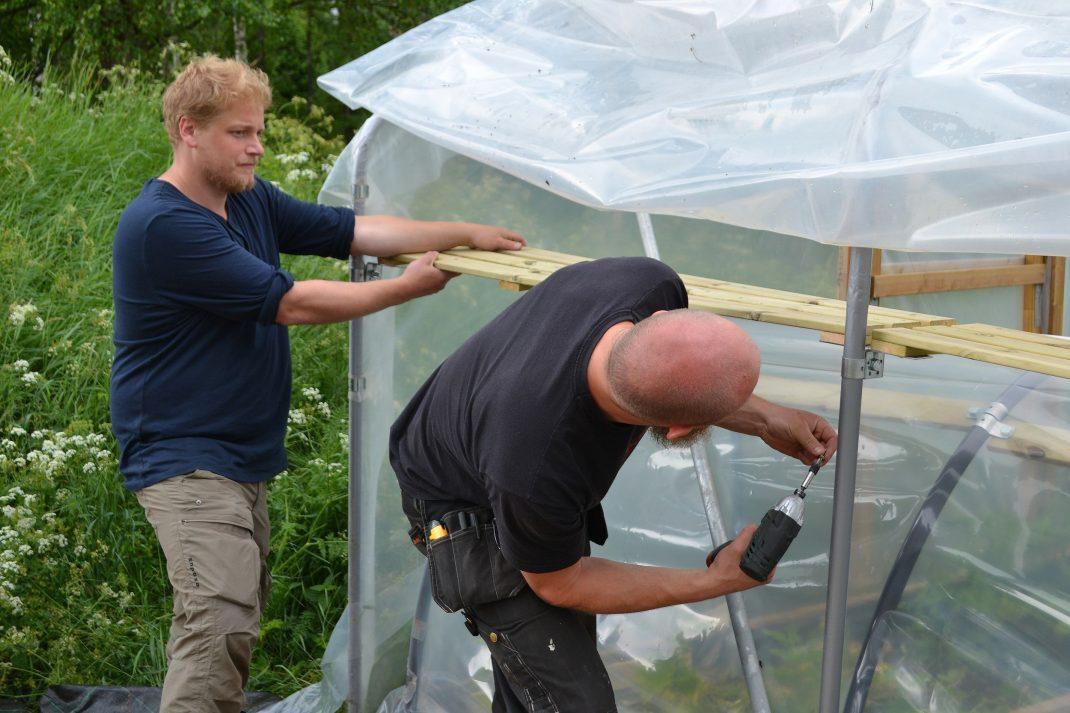 Två män arbetar med växthuskonstruktionen.