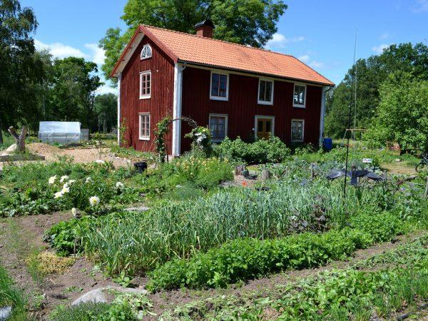 Skillnadens med hus och trädgård.