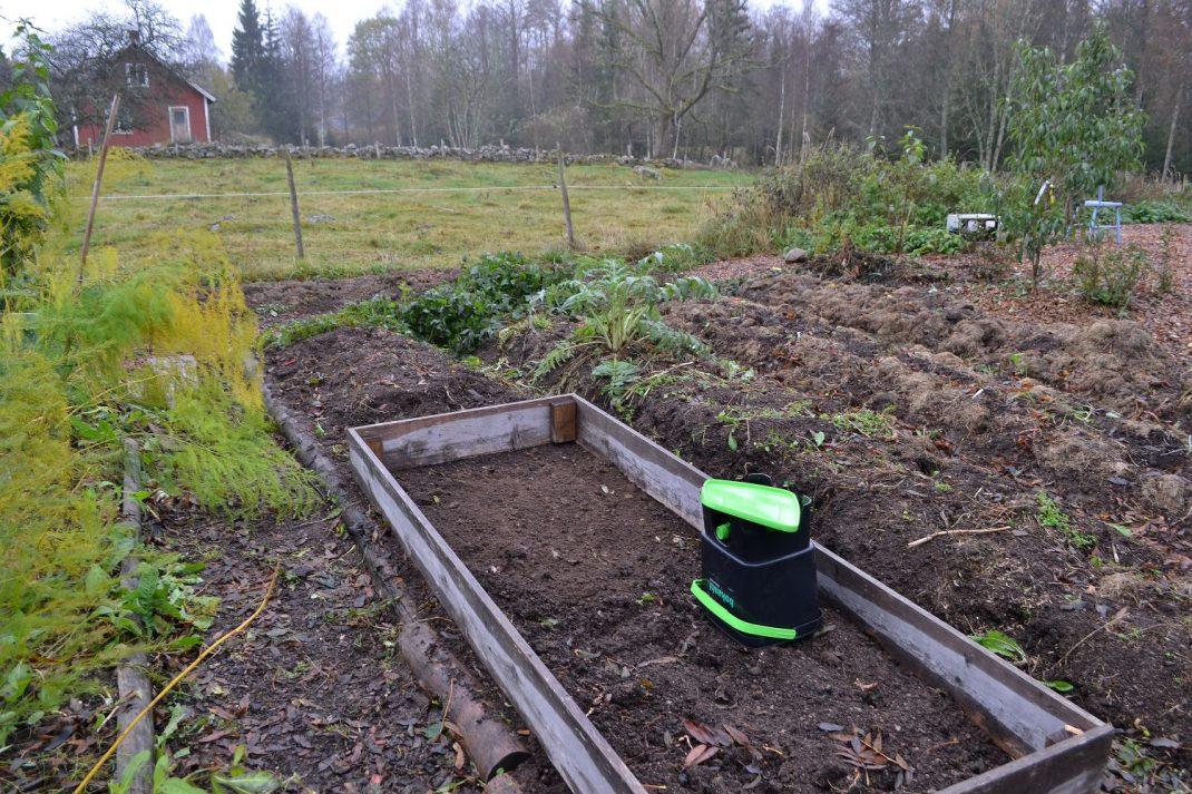 Upphöjda bäddar på rad i köksträdgården, varav en har en odlingsram på sig.