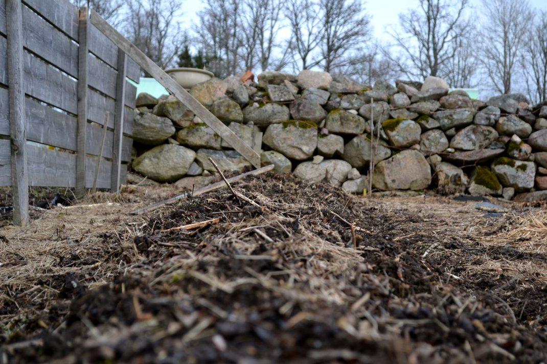 En odlingsbädd i skydd av plank och stenmur.