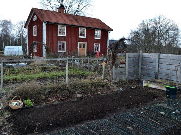 Köksträdgården med flera odlingsbäddar.