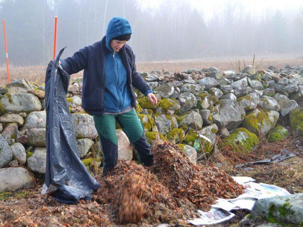 Sara jobbar vid stenmuren.