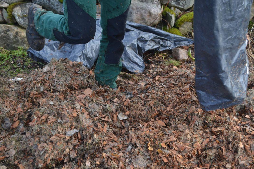En säck löv töms över en odlingsbädd.