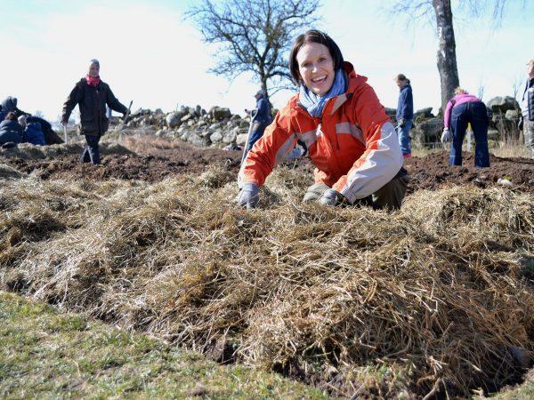 En kvinna lägger ensilage i en odlingsbädd