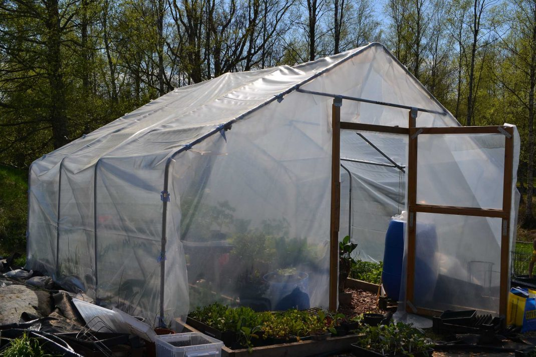 """Ett stort tunnelväxthus i """"hus""""-form, med vit plast. Buying a polytunnel, a large polytunnel with white plastic."""