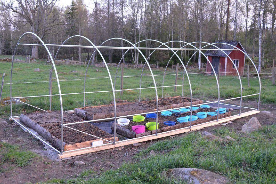 En stålkonstruktion står i trädgården. Buying a polytunnel, a steel skeleton in my garden.