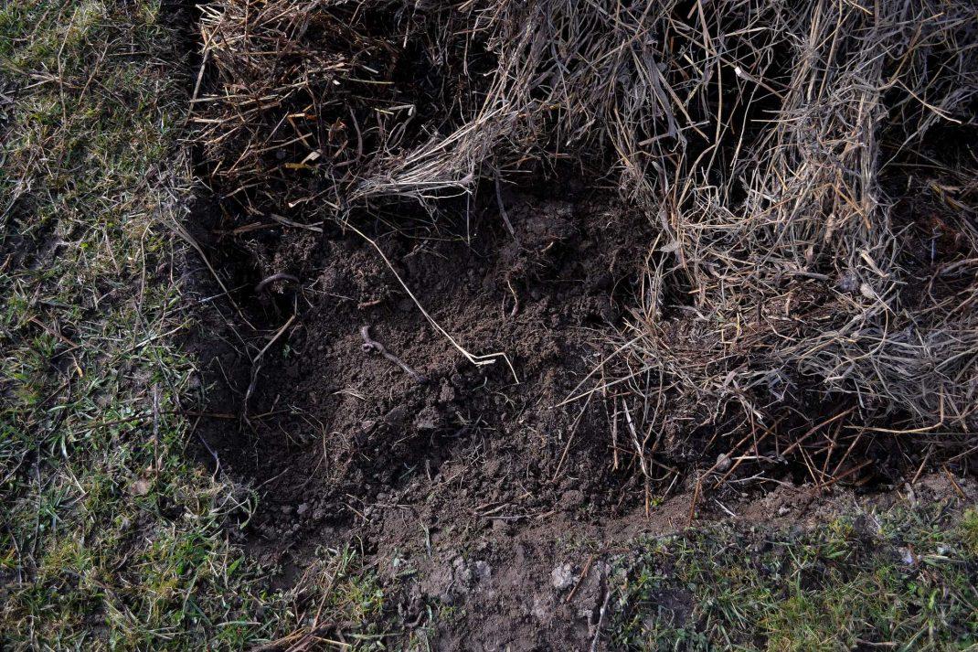 En grävd bädd i gräsmattan.