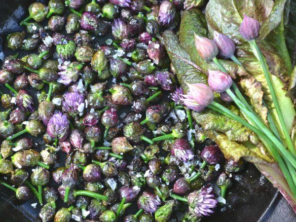 Små lilaaktiga gräslöksknoppar i en stekpanna.