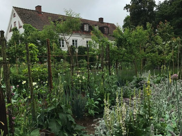 En vacker köksträdgård med vitt stenhus i bakgrunden.