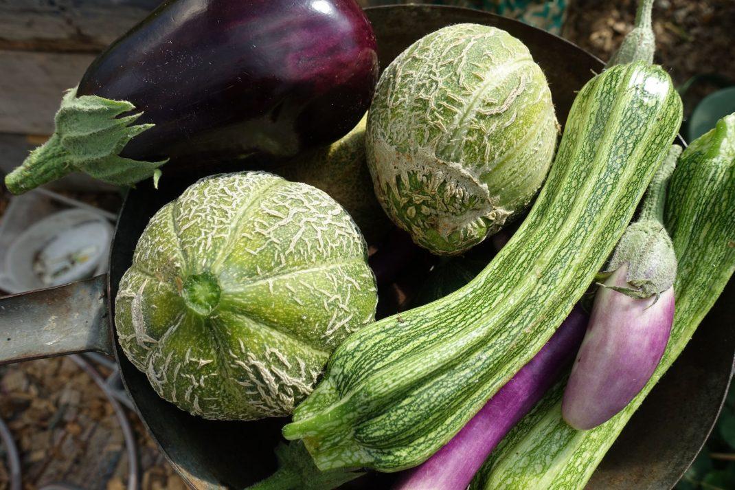 Melon, squash och aubergine i en gammal gryta.