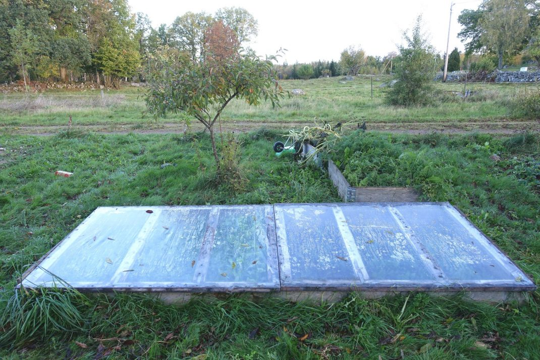 En stor odlingsram täckt med lock i trädgården.