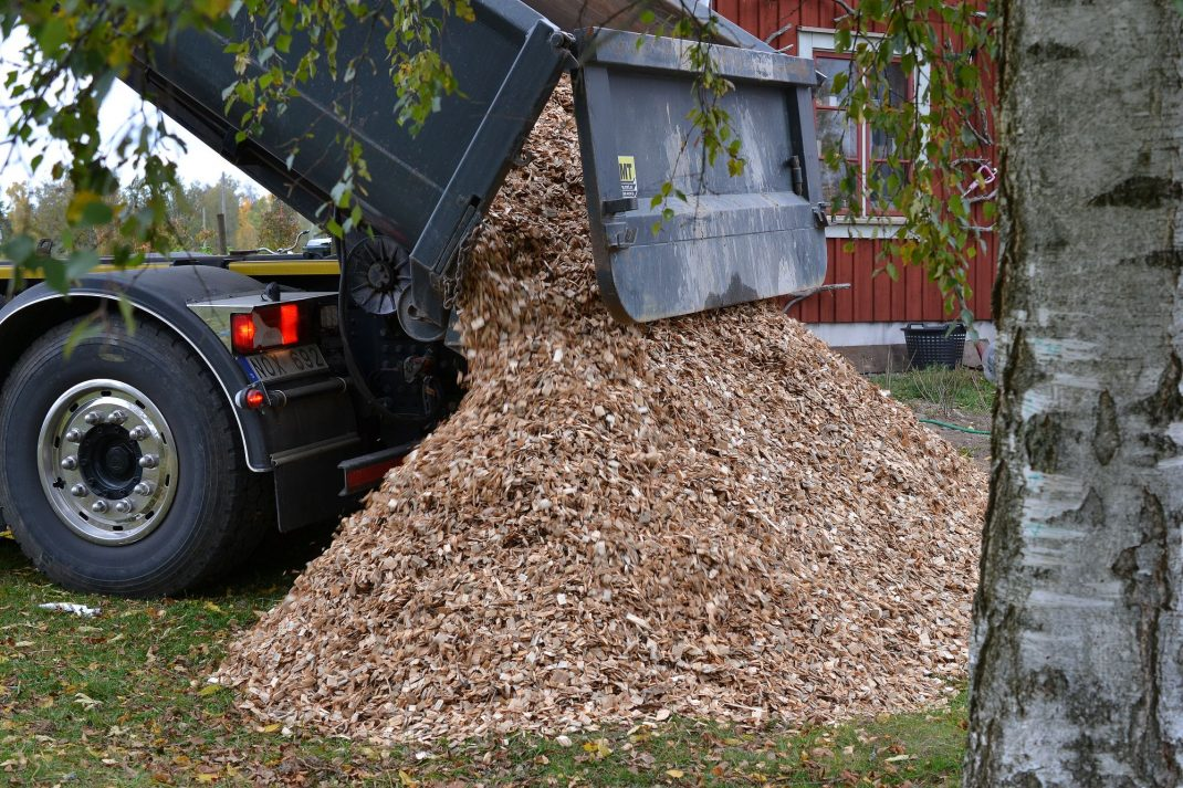 En lastbil tippar flis på marken. Wood chips being shipped.