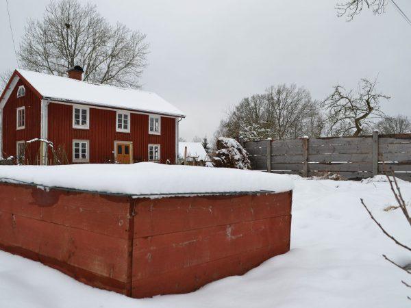 Skillnadens trädgård i vinterskrud