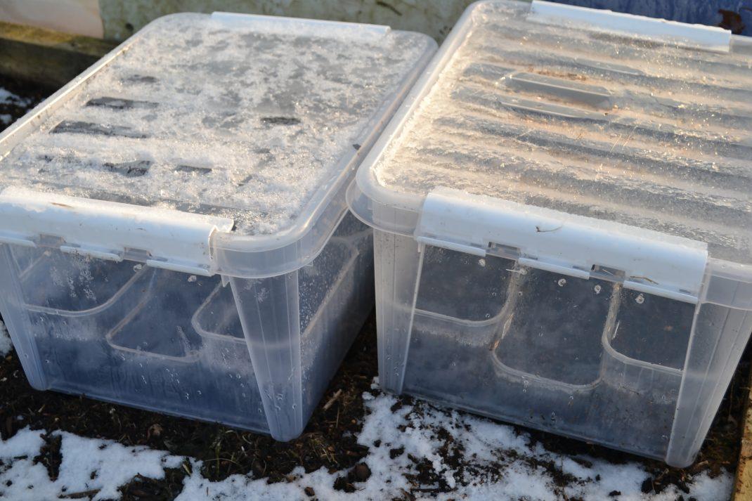 Stora, frusna plastbackar står utomhus på snö.