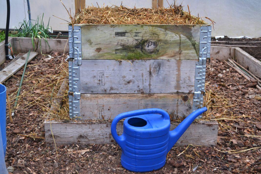 En blå vattenkanna står framför en bänk av pallkragar.