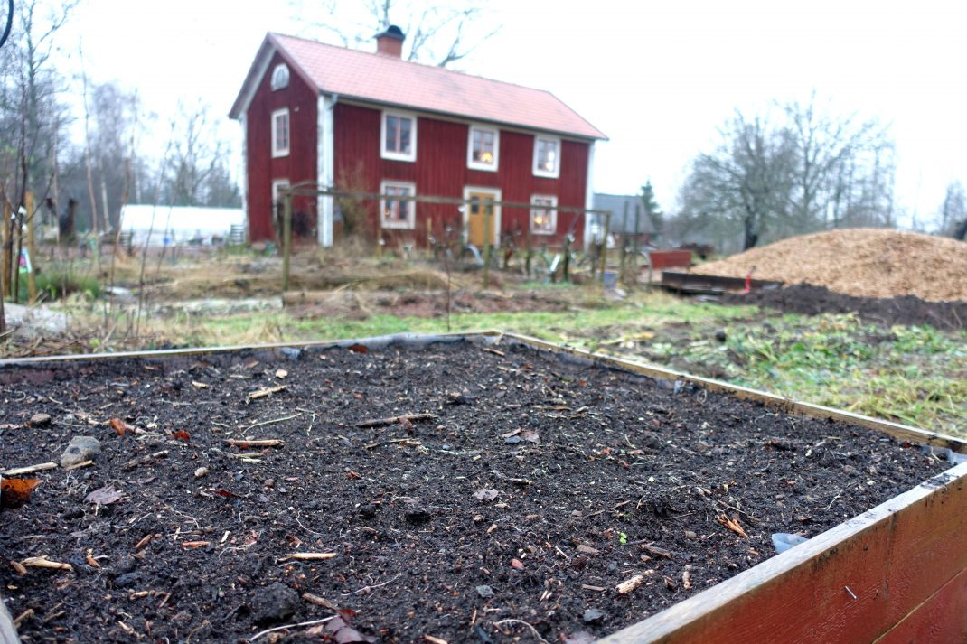 En odlingslåda fylld med jord i trädgården.
