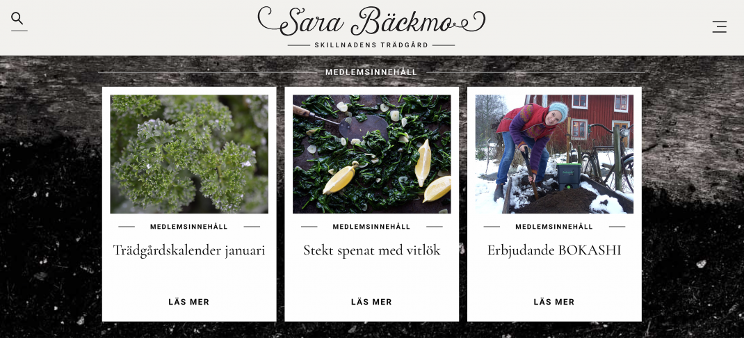 Skärmdump från nya sajten sarabackmo.se