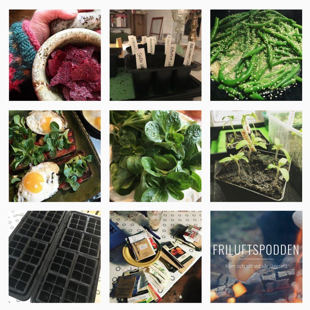 Ett kollage på nio bilder från Instagram.