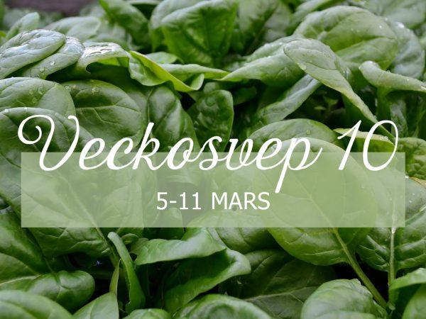 På en bädd av grön spenat står texten Veckosvept 10 5-11 mars